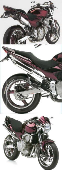 DPM Blast Auspuff Honda Hornet 600