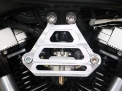 Motorhalteplatte Yamaha MT-01
